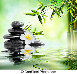 spa massage treatment in garden with frangipani and bamboo