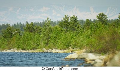 Shore of large northern lake with mountains in the background. Russia, Imandra