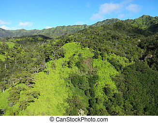 Greens of Kauai