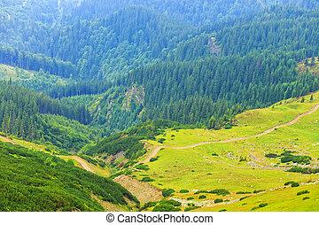 Parang Mountains, Romania