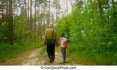 Grandfather and granddaughter are walking along the sunny forest