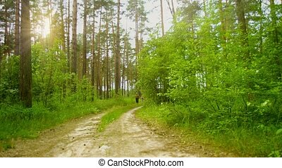 Grandfather and granddaughter walking along a road through a pine forest