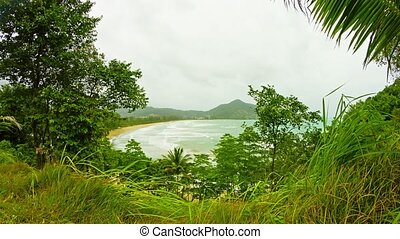 View through the trees on an empty beach on a cloudy day. Thailand, Phuket Island