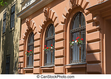 Ornate wrought iron window shutters with germanium plants...