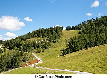 Alpine landscape with mountains, pastures, and footpath