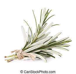 rosemary herb spice leaves isolated on white background...