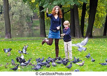 Sohn, Tauben, Fütterung,  Park, Mutter