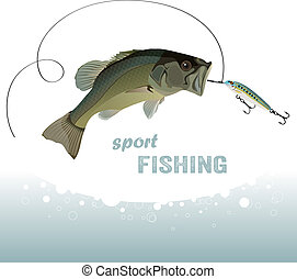 bass fishing, bass catches the bait, water spray, vector...
