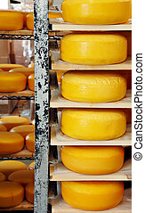 Cheese Wheels - Wheels of cheese stacked on shelves at a...