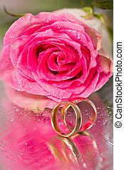 Gold wedding rings and rose - Gold wedding rings and pink...