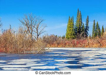 Spring morning in Siberia