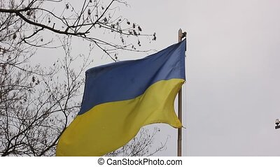 Ukrainian flag in the wind