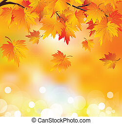 Autumn tree branch - Abstract autumn background. Autumn...
