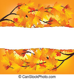 Autumn tree branches - Twigs of autumn trees. Yellow red...