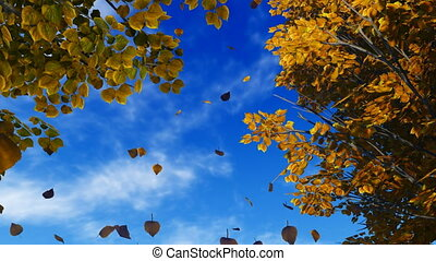 Autumn leaves 2 - Realistic three dimensional animation of...