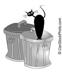noir, chat, déchets, boîtes
