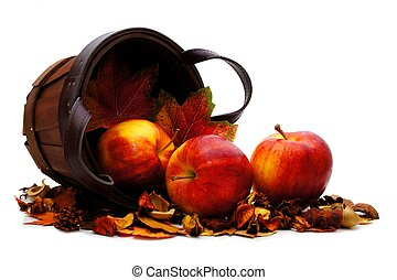 Harvest basket of apples - Harvest basket with spilling...