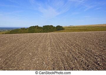 hillside plowed field - a newly plowed hillside field with a...