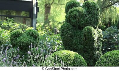 topiary  of the garden