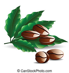 single coffee bean with leaf isolated on white background -...