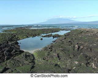 Seascape of the Galapagos Islands