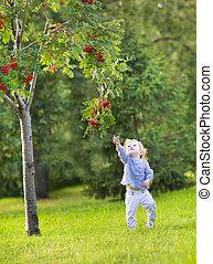 lindo, divertido, bebé, niña, Funcionamiento,...