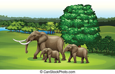 Elephants and the green plants - Illustration of the...