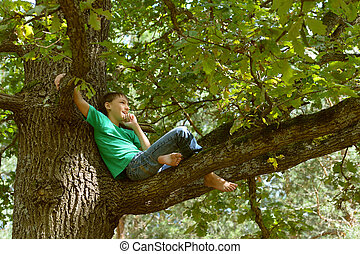 Little boy on tree - Portrait of a little boy on tree