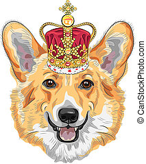 vector sketch dog Pembroke Welsh corgi smiling in gold crown...