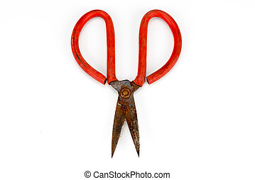old scissors full of rust isolated on white background