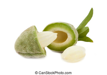 Fresh Almond isolated - Fresh almonds isolated on a white...