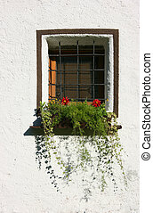 Window, bars and white wall - White wall, window with steel...