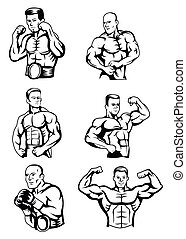 Body Builder Collection