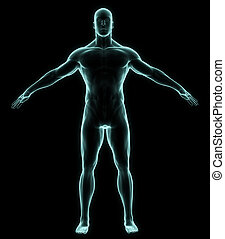 X-ray human full body in brightness blue on black background