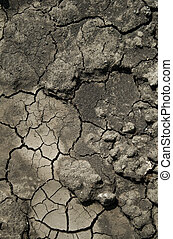 parched earth - Soil background. desert soil with cracks