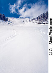 WInter Landscape - Slope on the skiing resort in Carpathians...