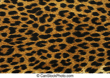 Black leopard spots - Close up black leopard spots texture...
