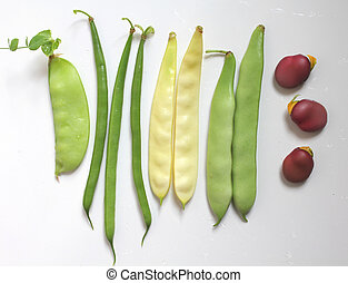 Beans - Variety of legumes : green and yellow beans, pea,...