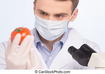 man looking at tomato and wearing mask. Cell culture assay...