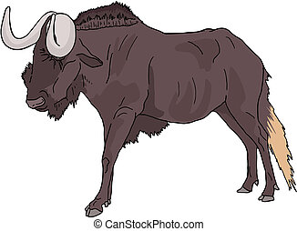 Wildebeest cartoon - Creative design of wildebeest cartoon
