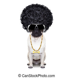 ganster dog - gangster cool afro dog wit gold chain and...