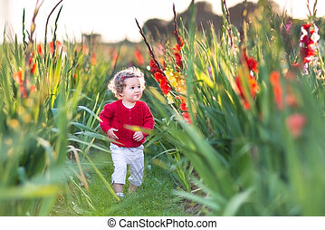 Cute baby girl on gladiolus farm - Cute baby girl playing on...