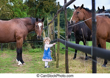 Cute little baby girl playing with horses on a farm in...
