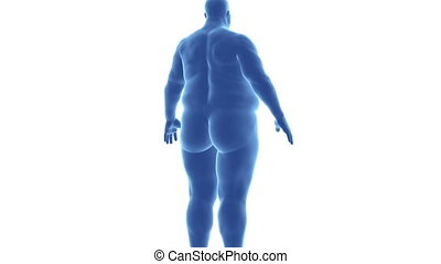 Man - from obesity to slim in time lapse with alpha channel