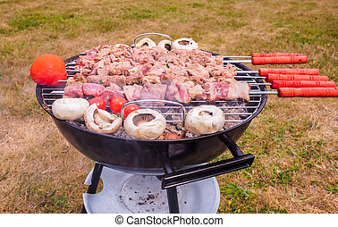 Shish kebab prepared over a black round shaped charcoal...
