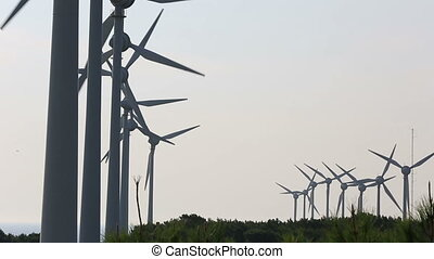 wind turbines generating power 13