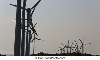 wind turbines generating power 12