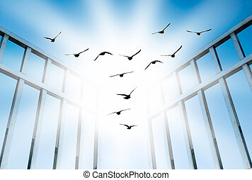 fly overcome the difficult gate - fly for freedom, overcome...