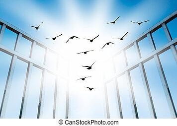 mosca, superar, difícil, portão