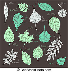 vector set of leaves from trees listennig